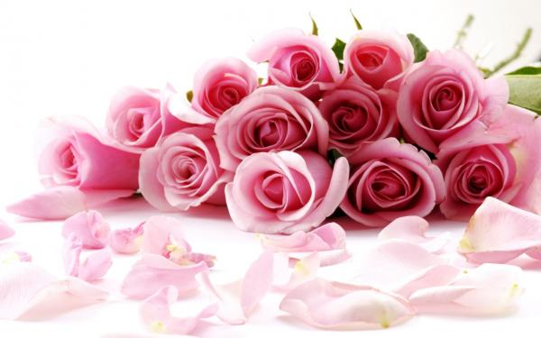 Roses Are The Traditional Gift Given On Valentines Day But They Certain To Be Well Received Any Time Of Year Before You