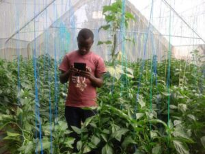 Harun Munuve one of the farmers championing low cost greenhouses adoption