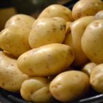 Anett potato variety