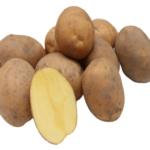 Arnova potato variety by Agrico East Africa